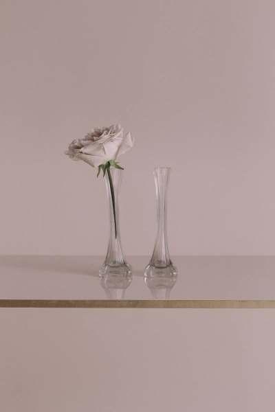 photography, art direction: Anna-Jill Gierhards