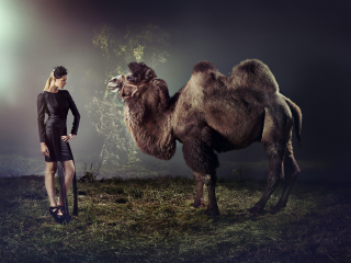 photography: Michael Bader